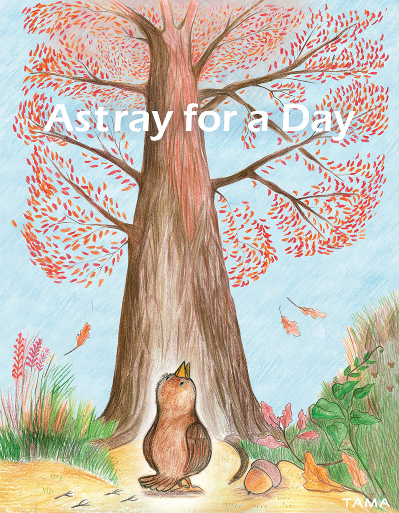 premiere de couverture illustration traditionelle pour le livre Astray for a Day