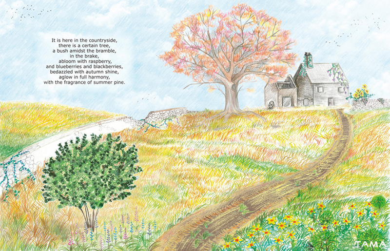 le jardin illustration traditionelle pour le livre Astray for a Day