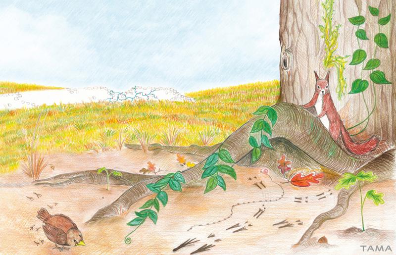 le petit moineau et l'ecureuil illustration traditionelle pour le livre Astray for a Day