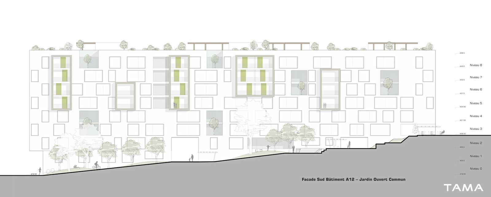façade Sud typologie 5.5 piéces